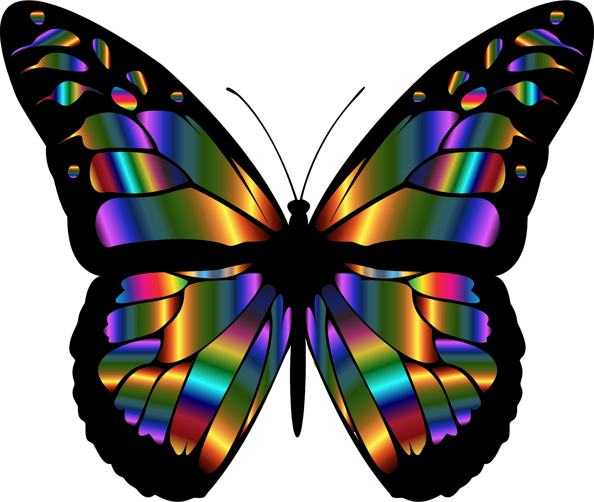 Kite clipart butterfly. Iridescent monarch by gdj