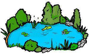 Clip art free panda. Lake clipart habitat pond