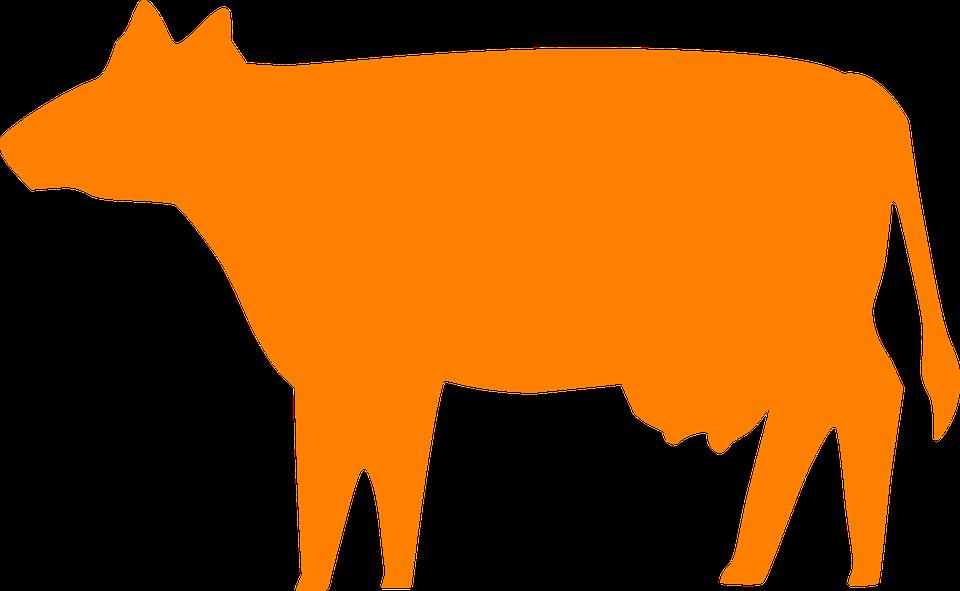 Farm pastoral farming graphics. Clipart lake basin