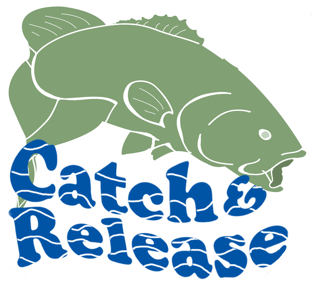 Clipart park polluted. Save the river bass