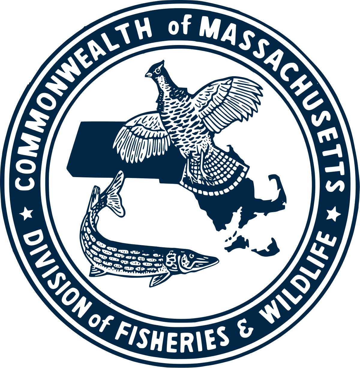 Division of fisheries and. Clipart lake habitat pond