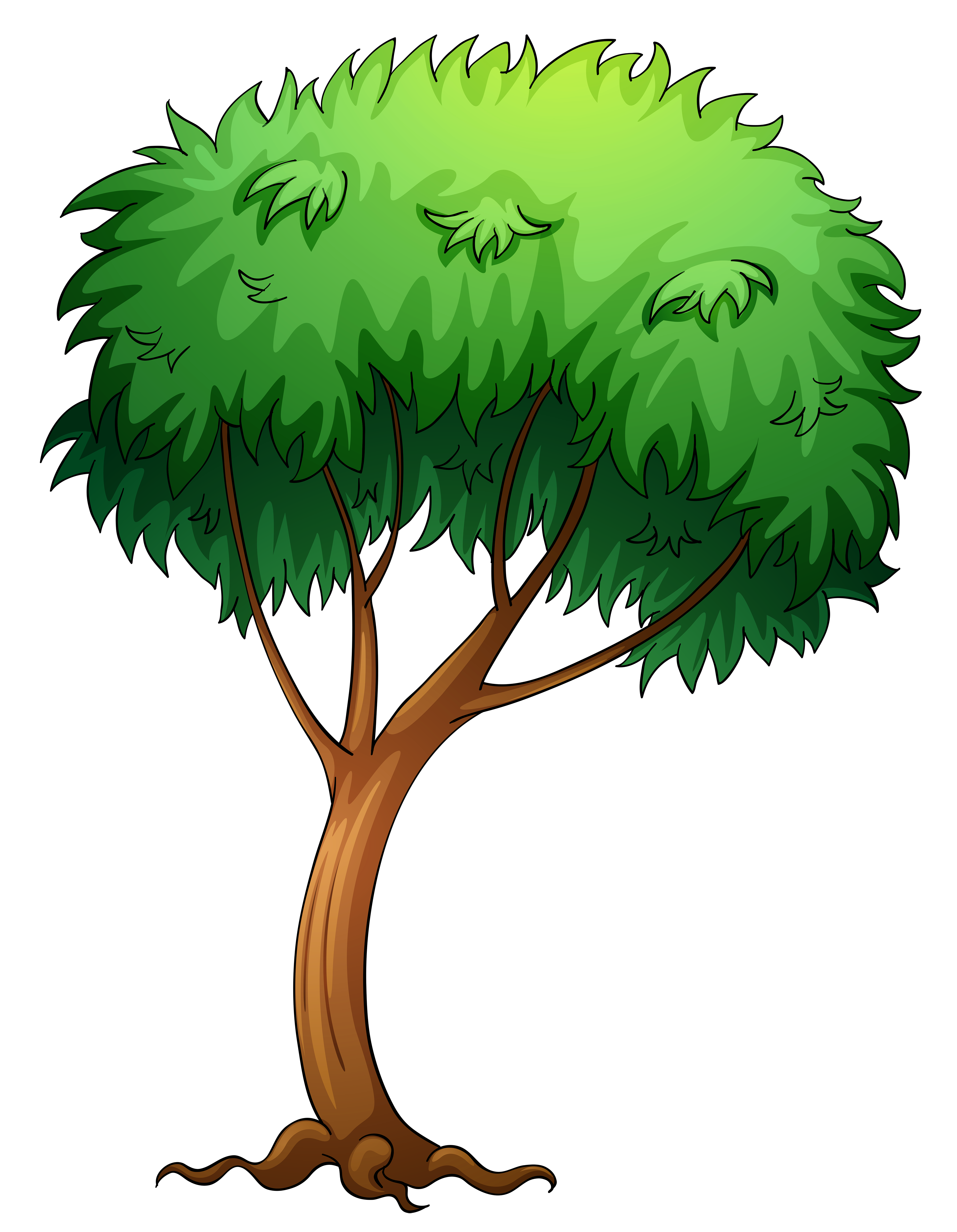 Willow tree cartoon group. Clipart trees root