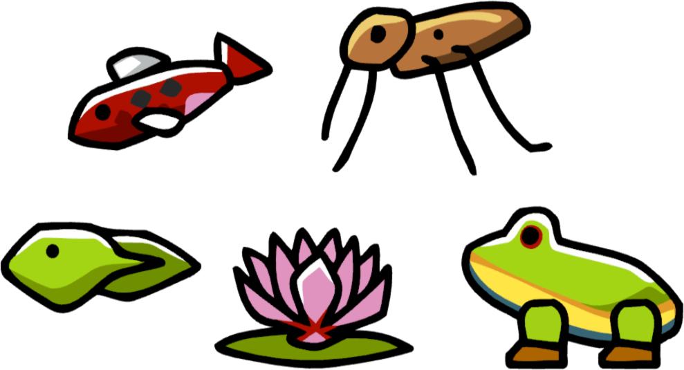 Lake clipart koi pond. Scribblenauts wiki fandom powered