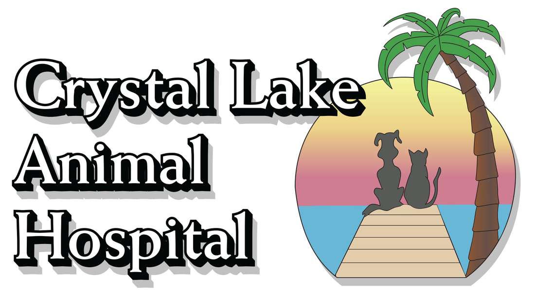Crystal hospital home picture. Clipart lake lake animal