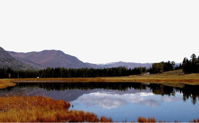 Clipart lake lake scenery. Beautiful duck ze famous