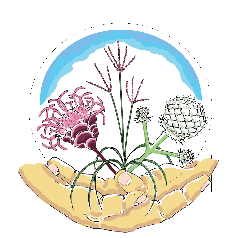 About sustainable landscapes design. Plants clipart native plant