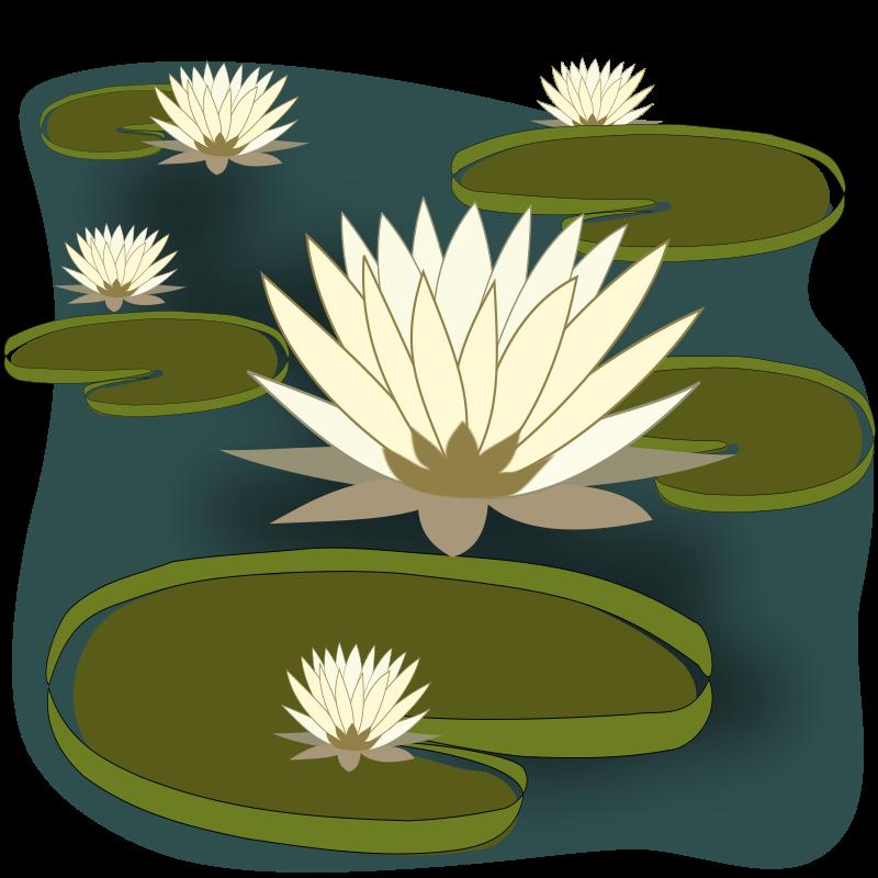 Lake clipart lily pad pond. Vit ria r gia