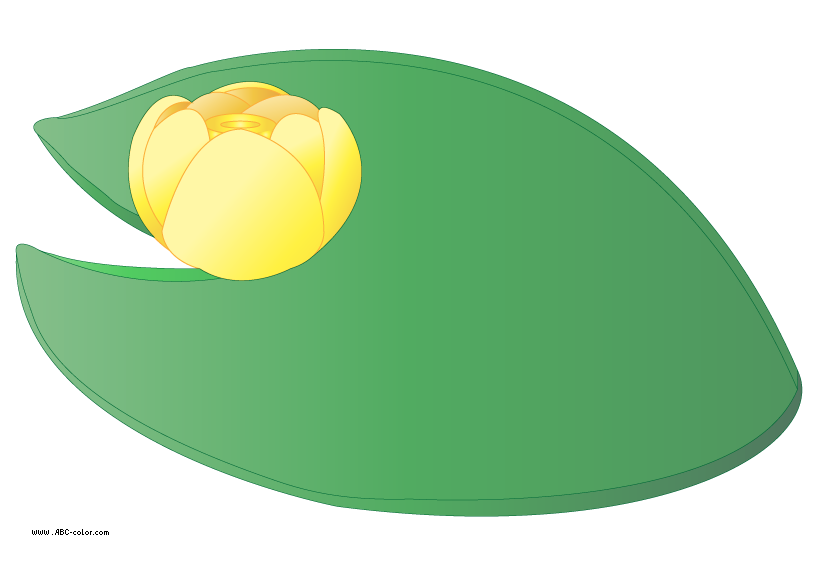 Lake clipart lily pad pond.  collection of water