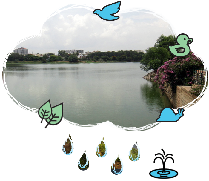 Pavitra foundation . Lake clipart water body