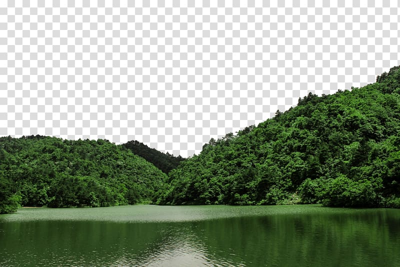Clipart lake scenic. Green leafed trees daming