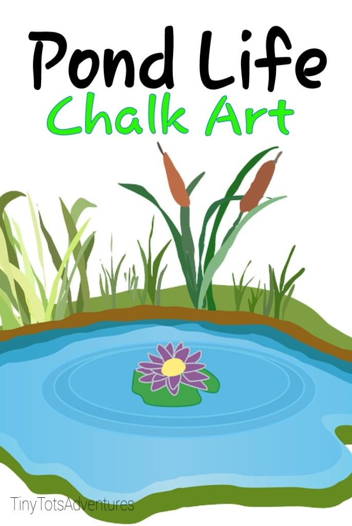 Clipart lake spring pond. Life chalk art outside