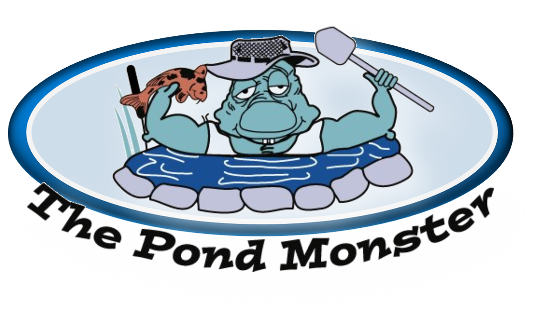 Lake clipart pond life. Fl water feature maintenance