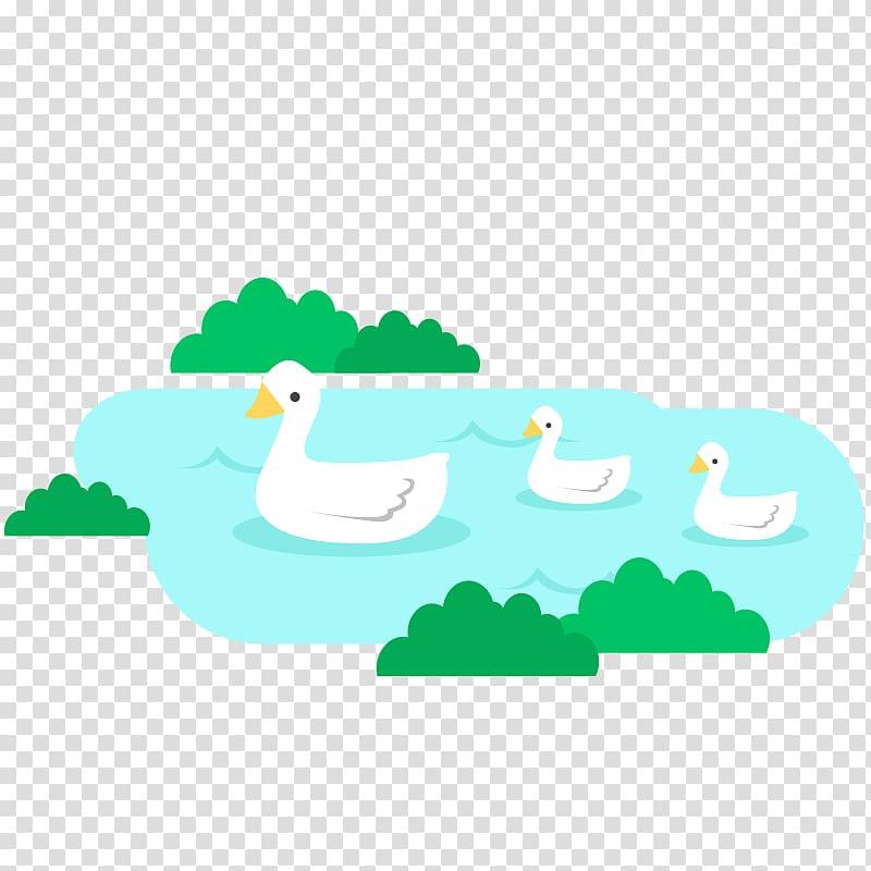 Ducks clipart lake clipart. Duck green swan transparent