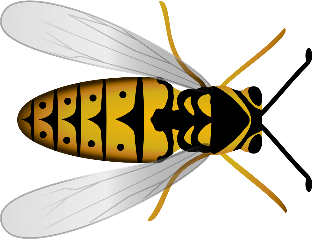 Onlinelabels clip art bee. Lake clipart top view