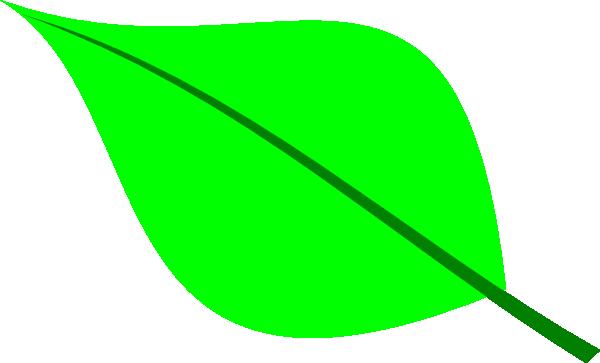 Green clip art at. Clipart leaf