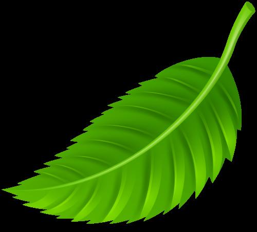 Leaf clipart. Png clip art best