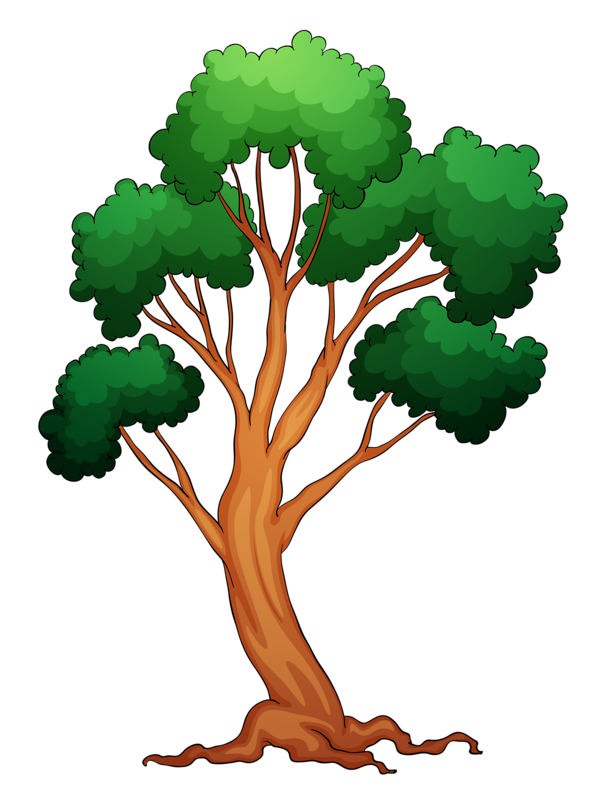 Memories clipart colorful tree.  png pinterest clip