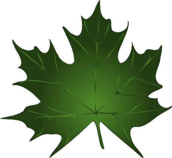 Leaf clipart pumpkin. Fig tree at getdrawings