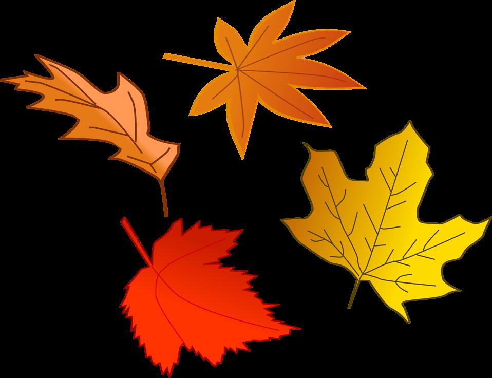 Leaf autumn free stock. Heat clipart heat safety