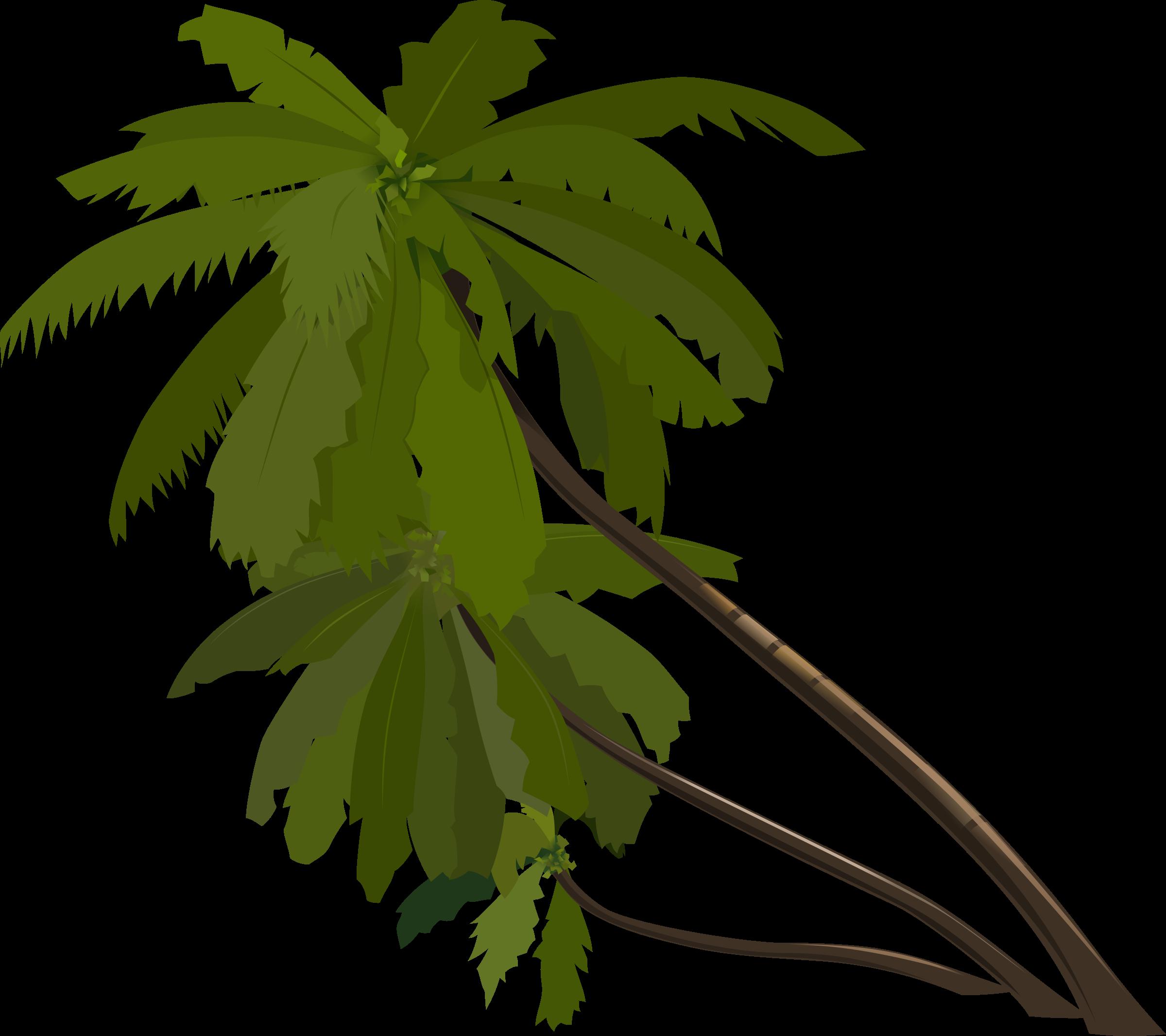 Palm trees big image. Clipart tree banana