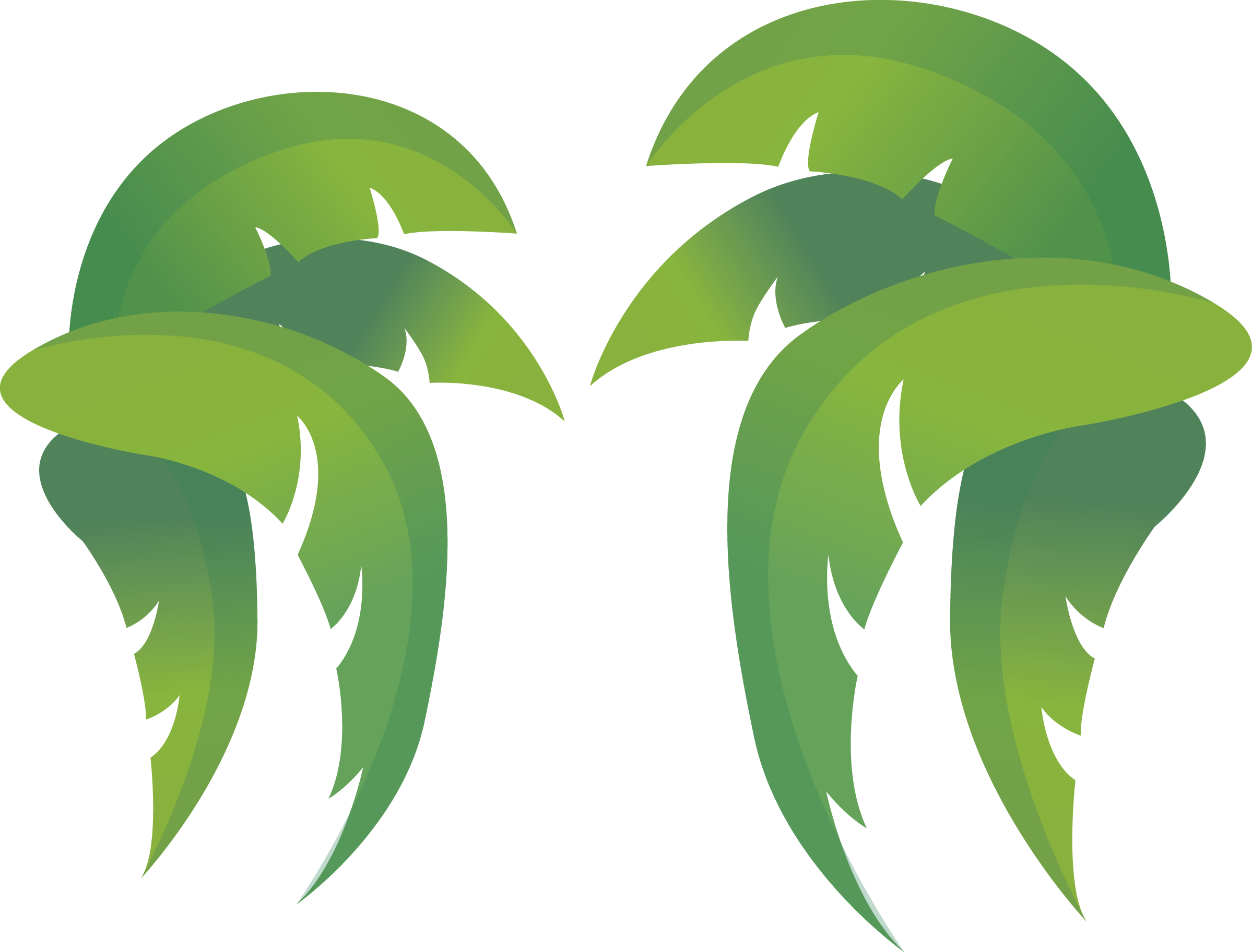 Watermelon clipart leaf. Coconut clip art leaves