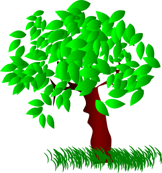 collection of tree. Clipart leaves large leave