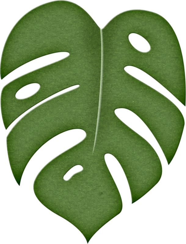 Leaf png pinterest stenciling. Moana clipart leaves