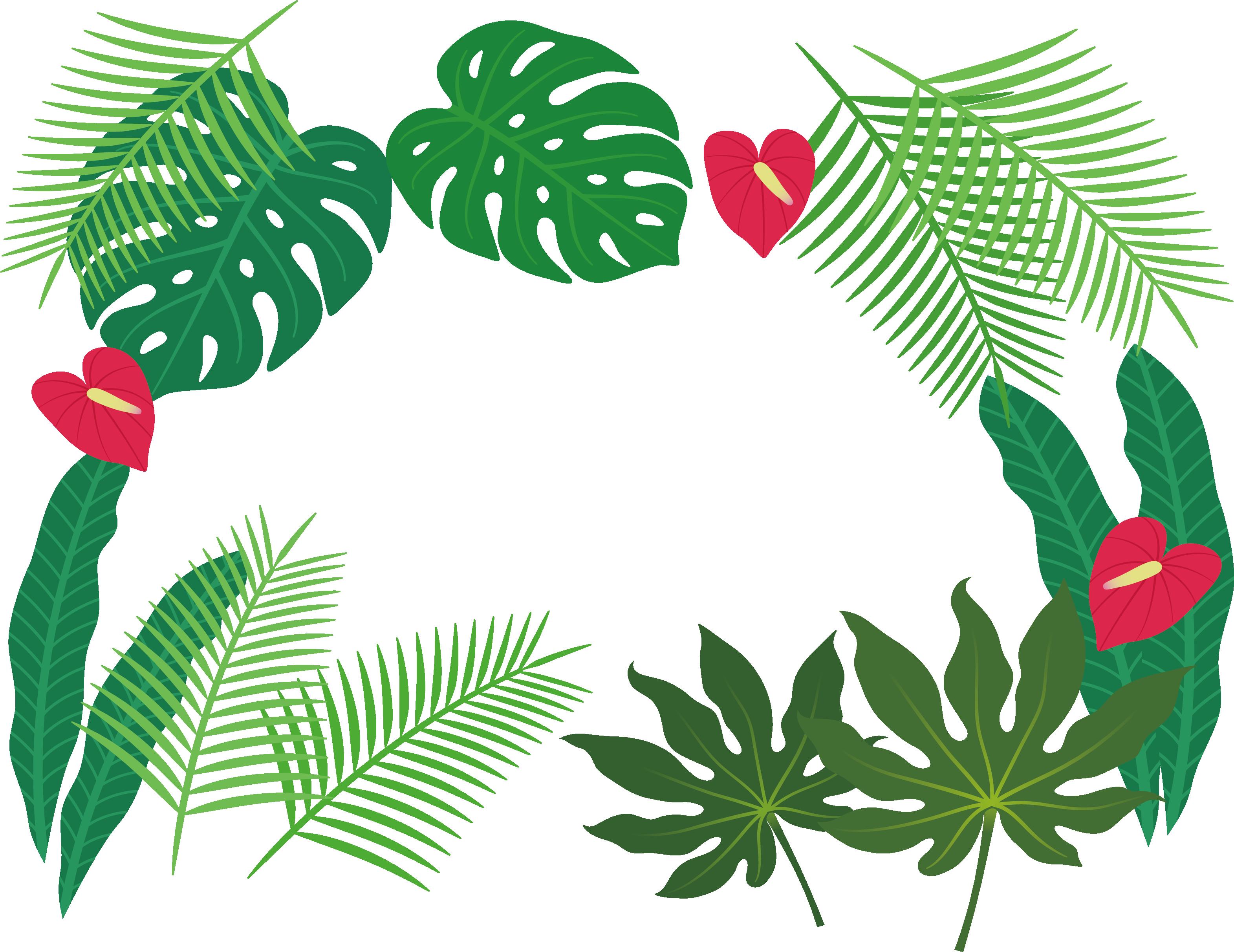 Watermelon clipart tropical. Leaf clip art plant