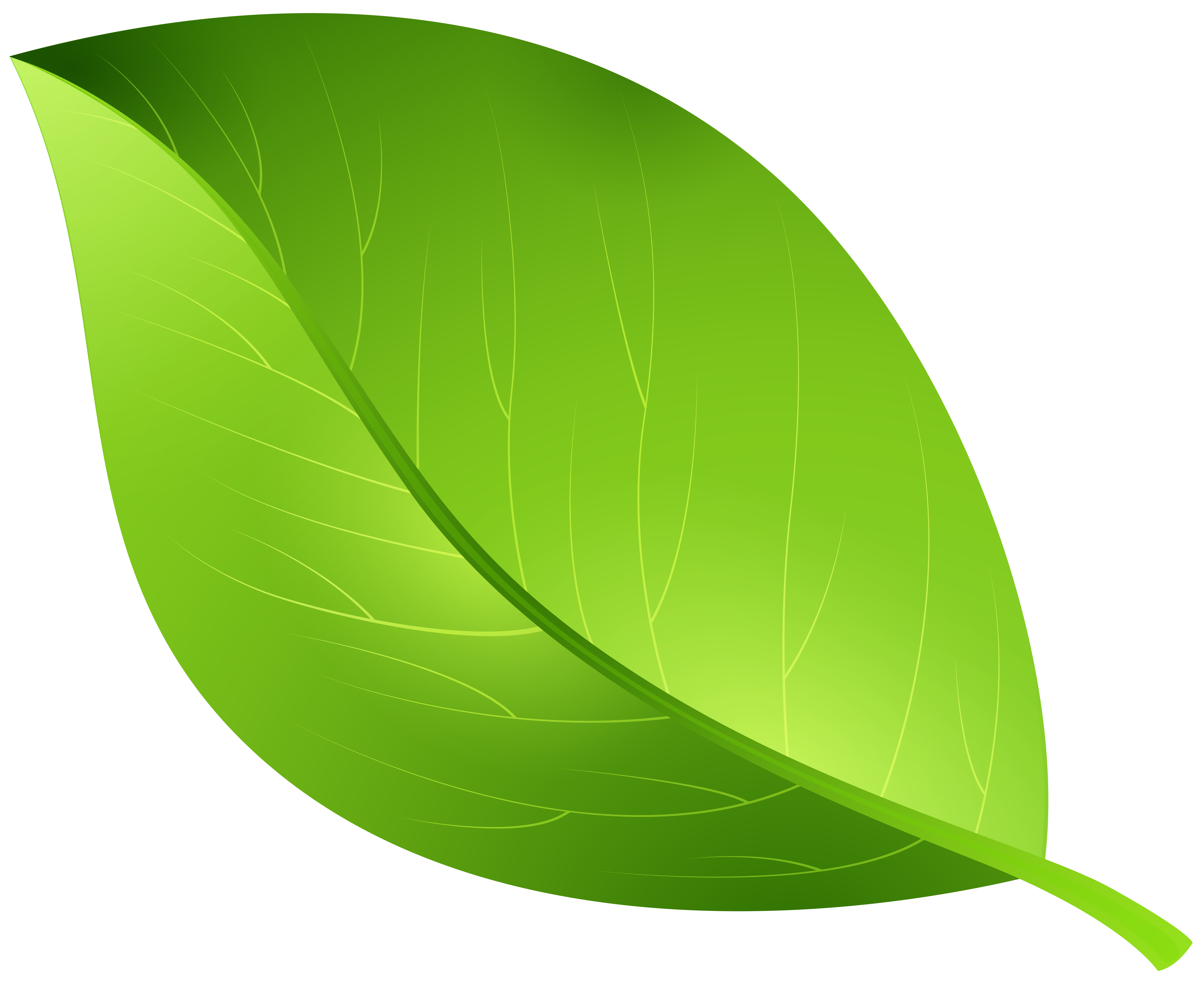 Leaf clipart transparent background. Cartoon green png clip