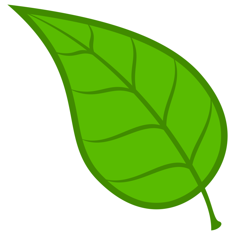 Leaf vector png. Cm by adamlhumphreys on