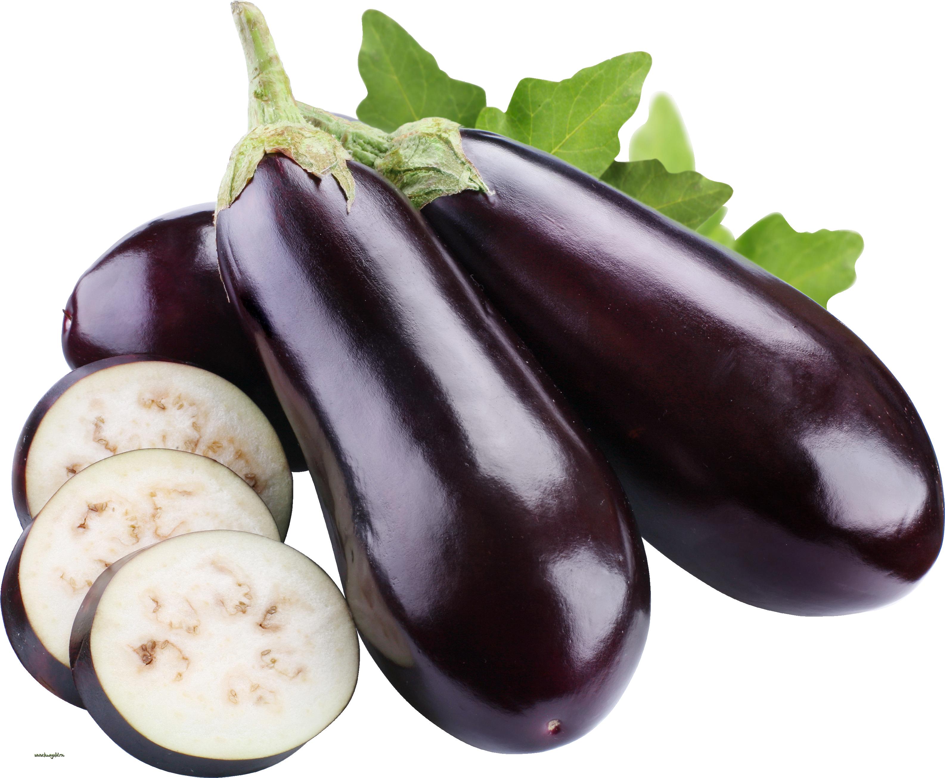 Clipart tree eggplant. Five isolated stock photo