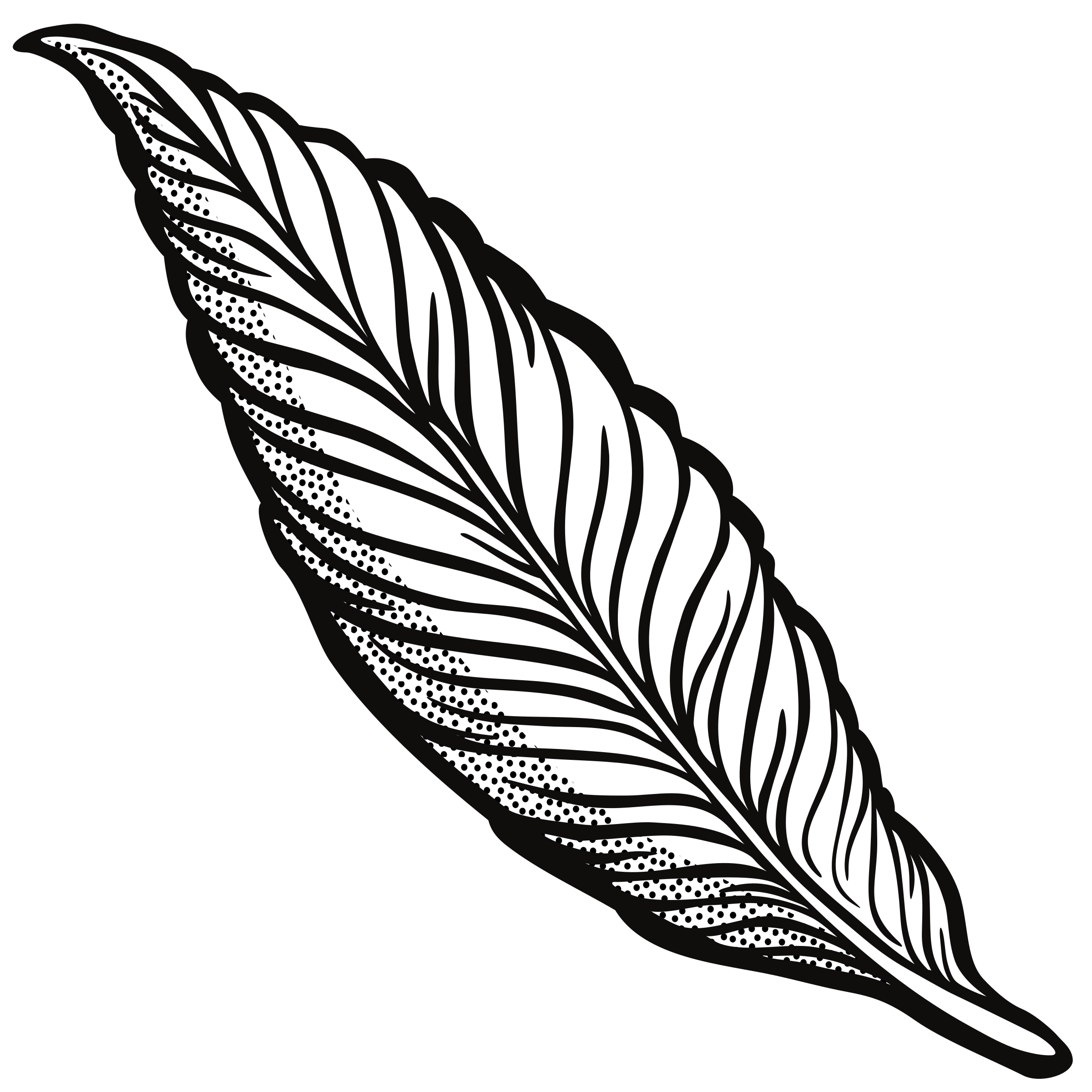 Lineart big image png. Pencil clipart feather