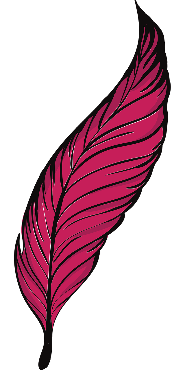 Feather clipart quill. Bird clip art transprent