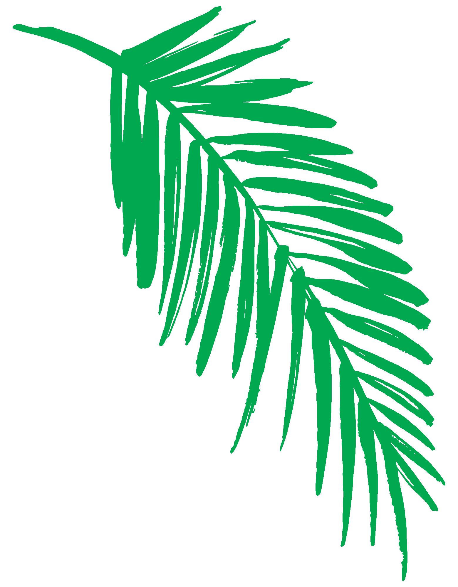 Clipart leaves fern. Illustrations clip art little