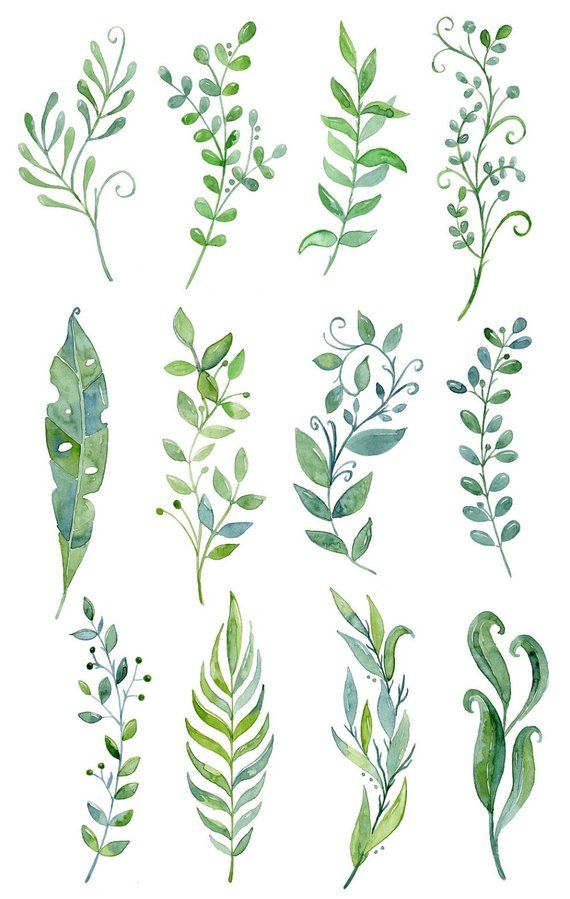 Buy for usd handpainted. Clipart leaf floral