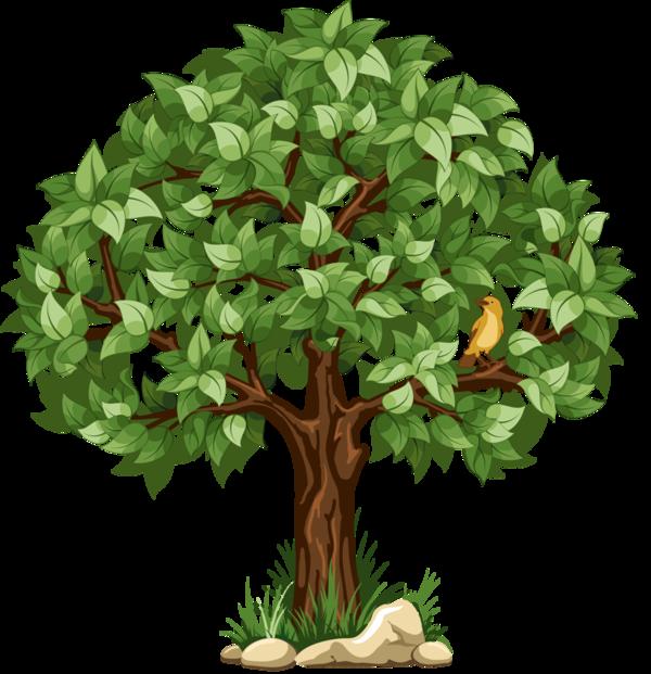 Clipart trees october. Arbre tubes png plants
