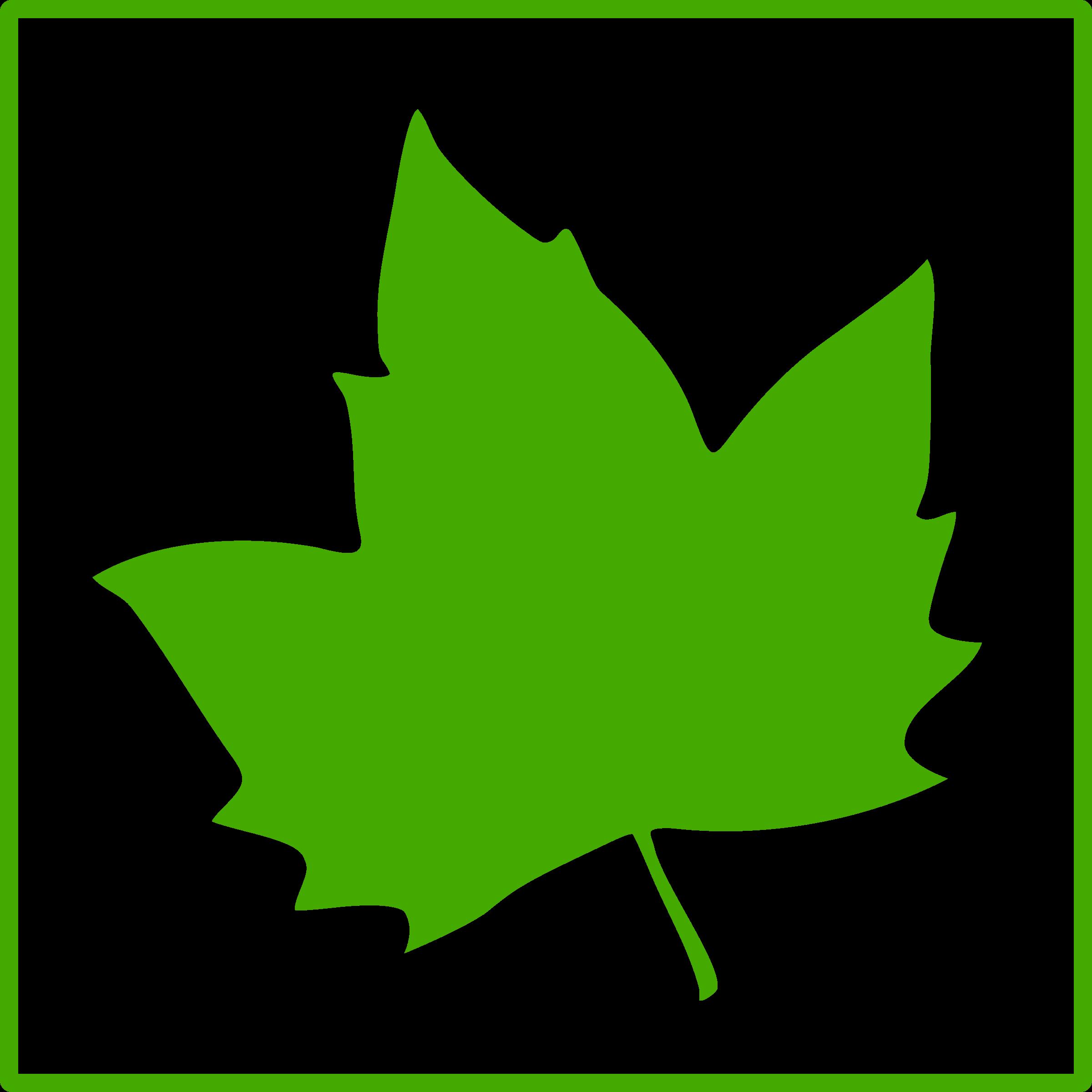Eco green big image. Leaf clipart icon