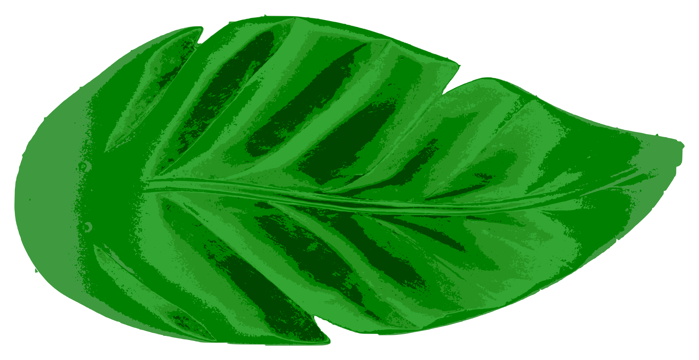 Clipart leaves large leave. Tropical leaf icons png
