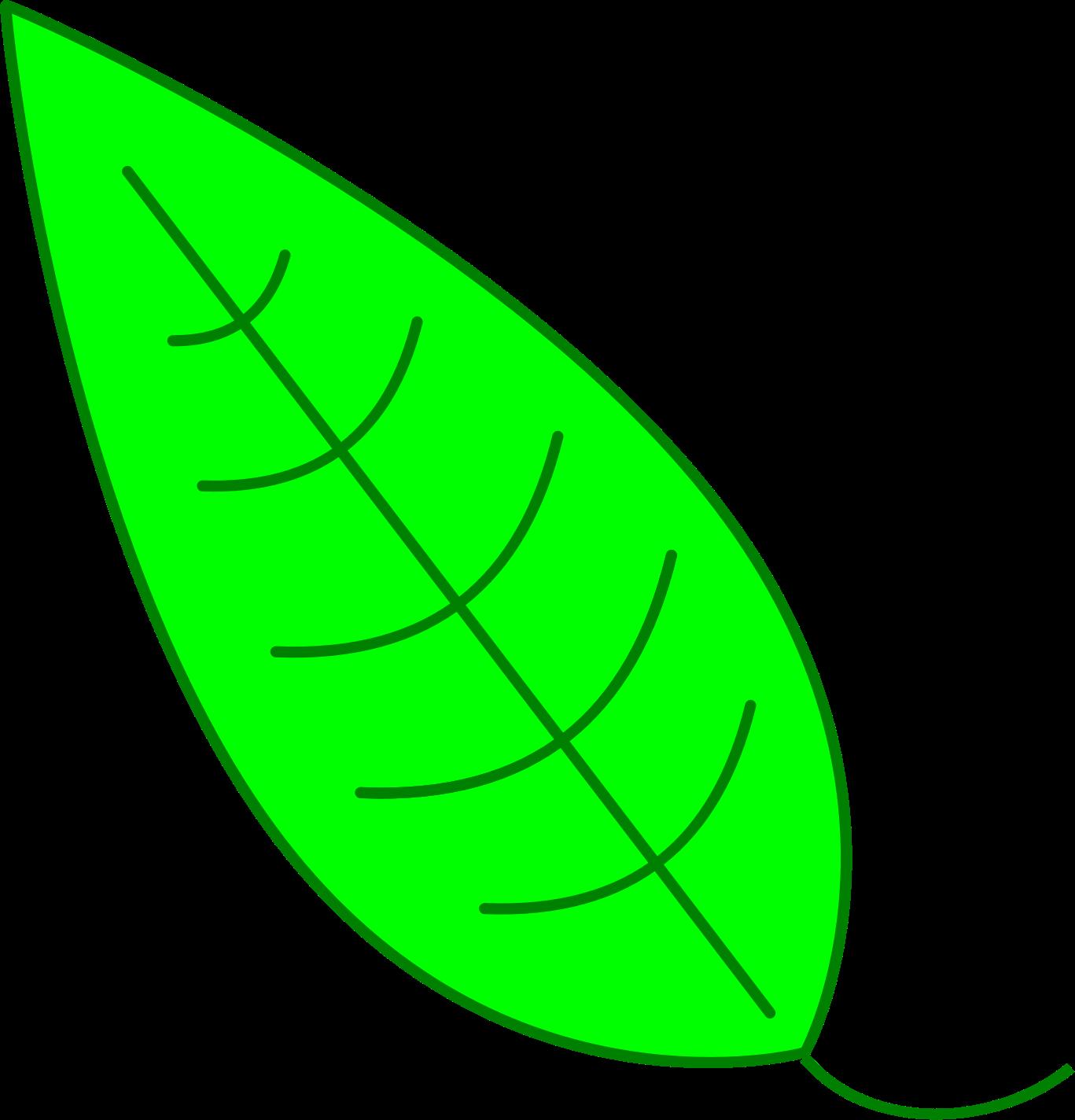 Leaf clipart kid. Green simple big image
