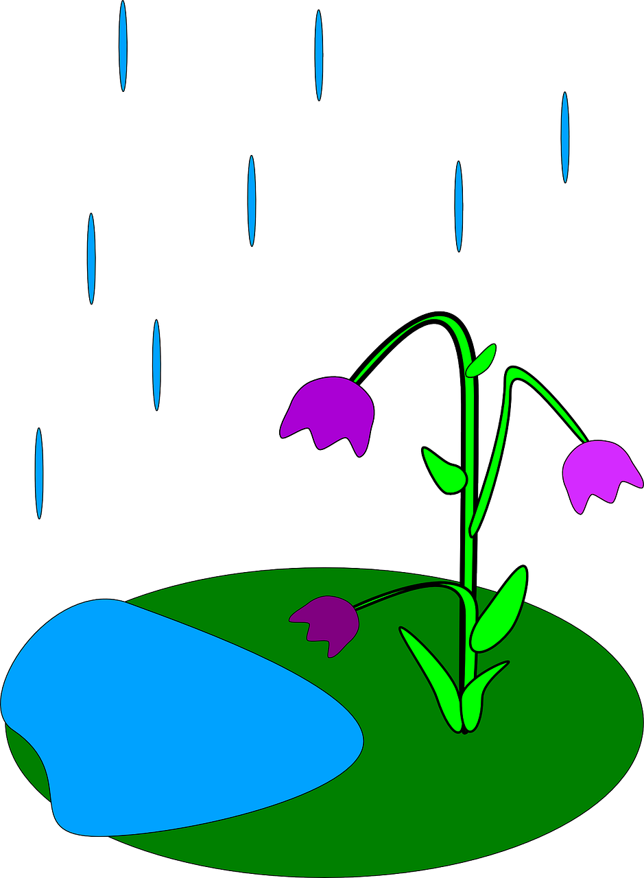 Cycle clipart water cycle. How is rain formed