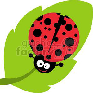 Ladybug on royalty free. Ladybugs clipart leaf clip art