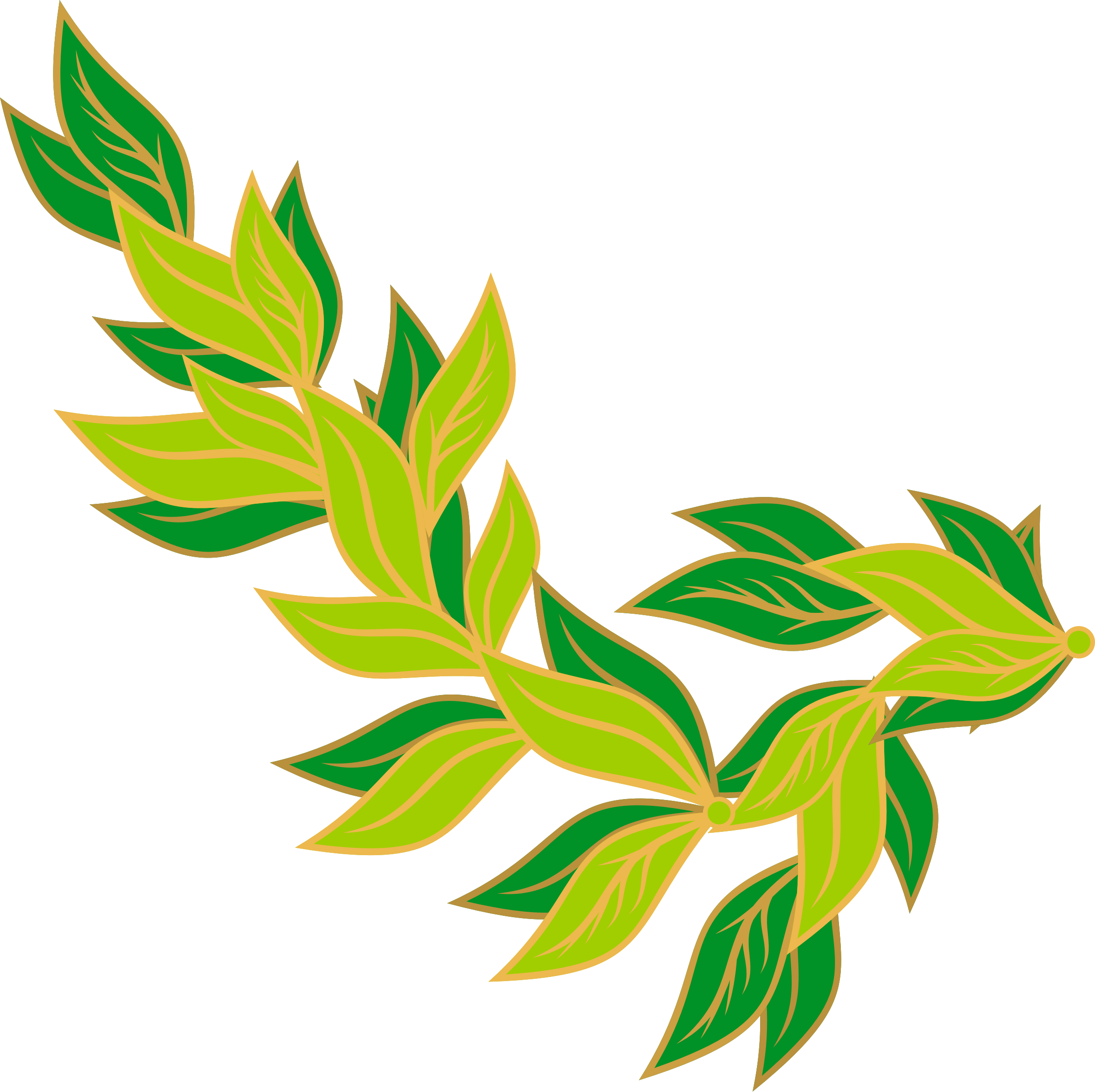 Bay leaf big image. Jungle clipart borders