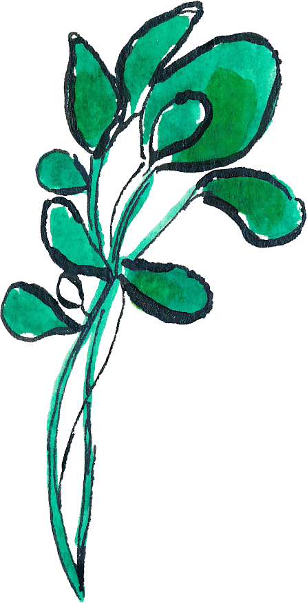 Leaf clipart leafy greens. Montana harvest of the