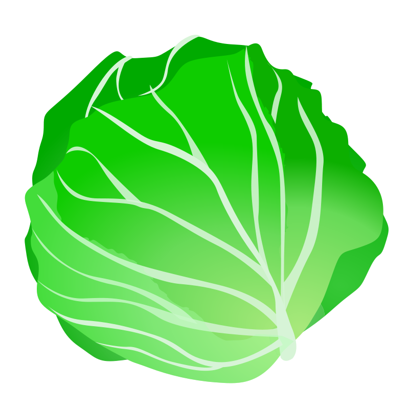 collection of green. Tomatoes clipart lettuce tomato