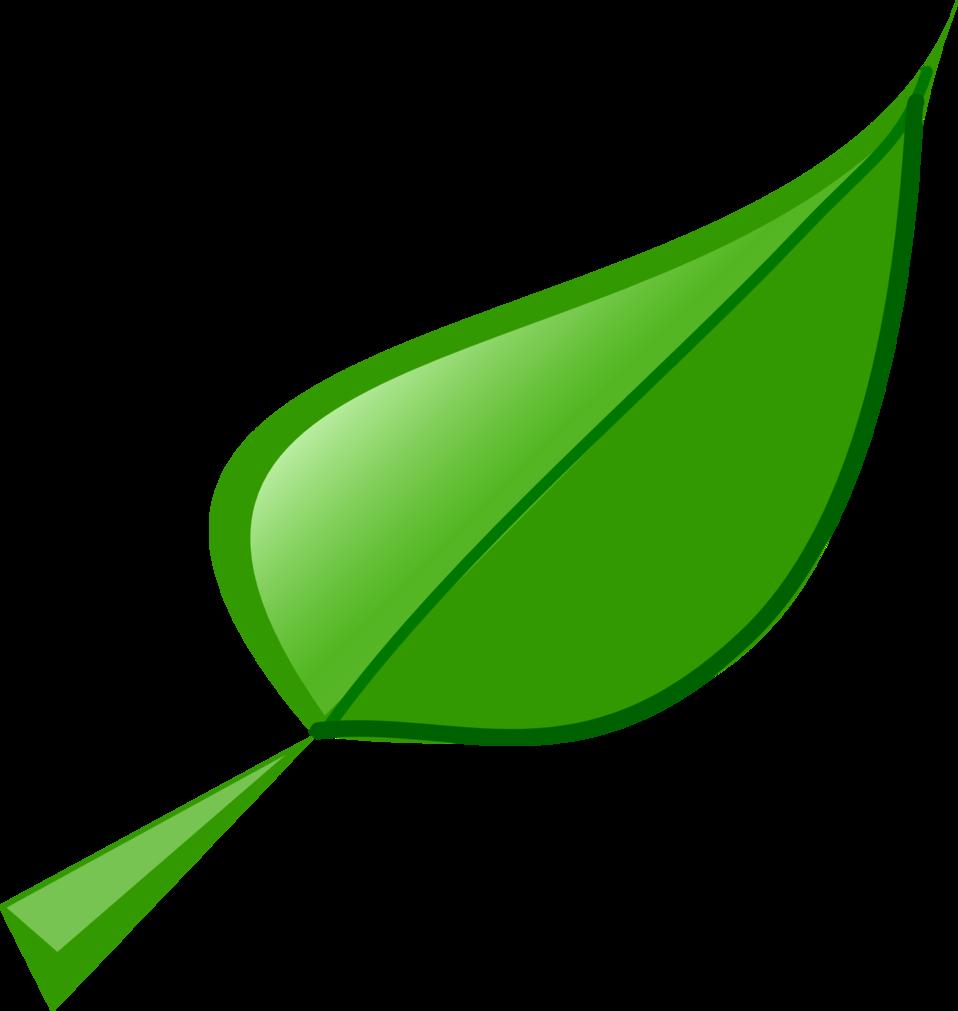 Leaf clipart leafy greens. Public domain clip art