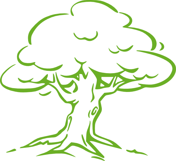 Green oak clip art. Clipart tree colour