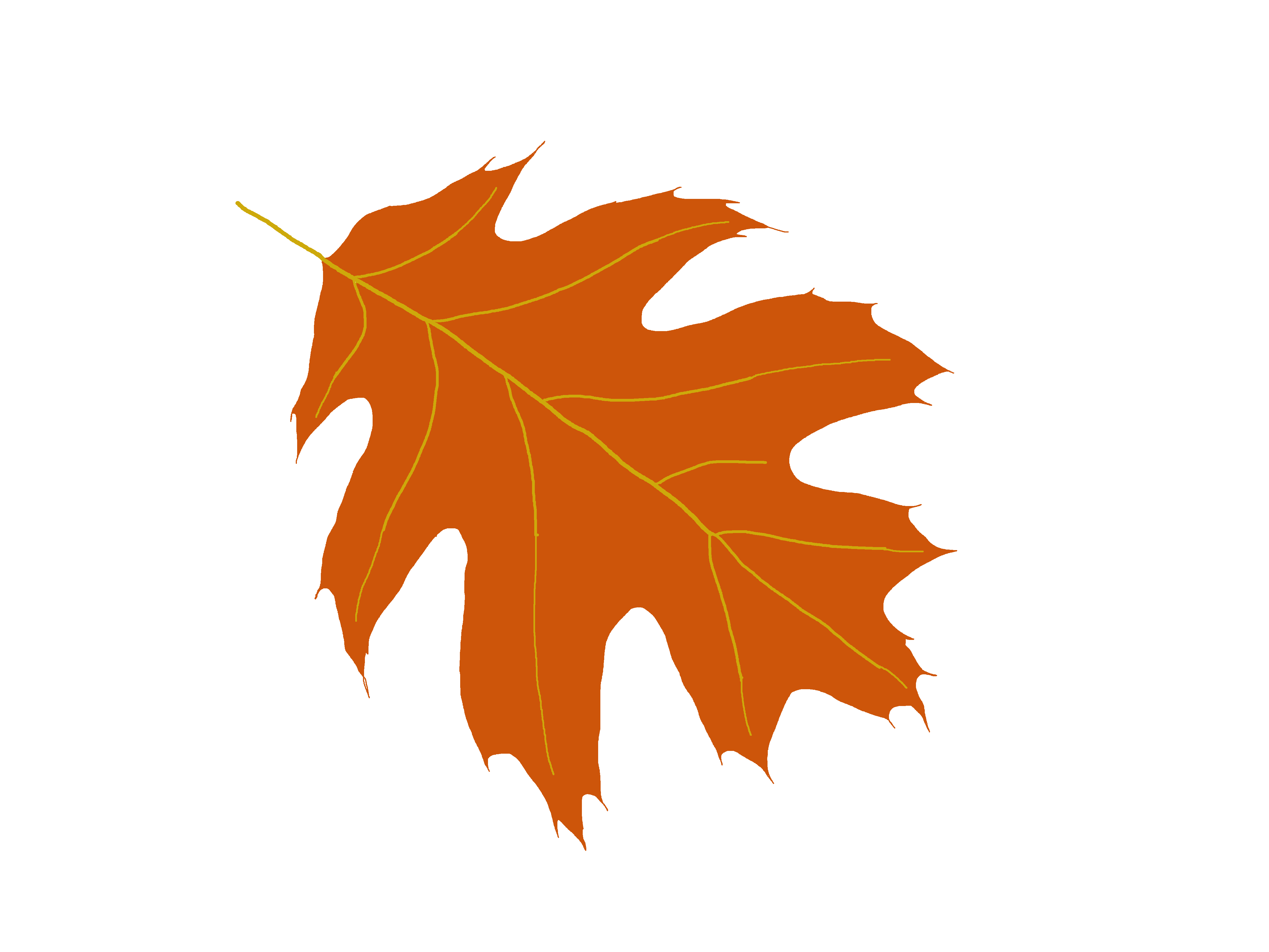 Leaf clipart face.  collection of oak
