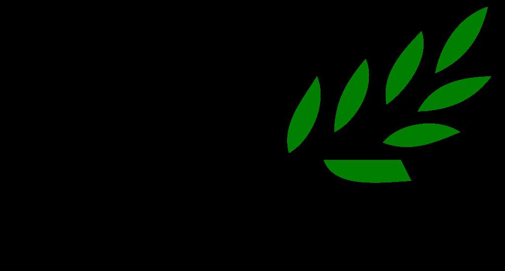 File branch svg wikipedia. Leaf clipart olive tree