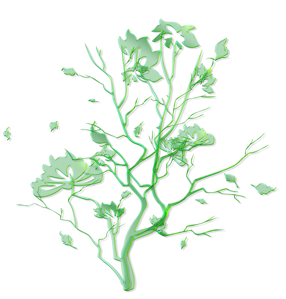 Ornament clipart leaf. Green floral png gallery