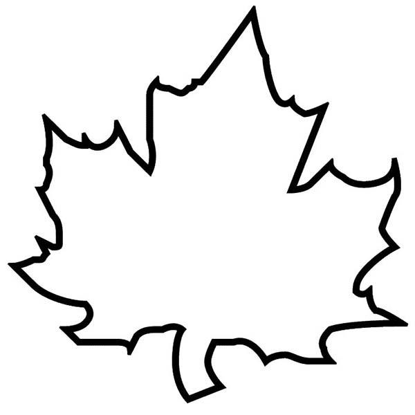 Free leaf download clip. Leaves clipart outline